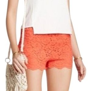 Free People Dragon Fruit Aubrey Lace Shorts Size 8